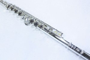 The DZ-200 Closed-hole Beginning Flute